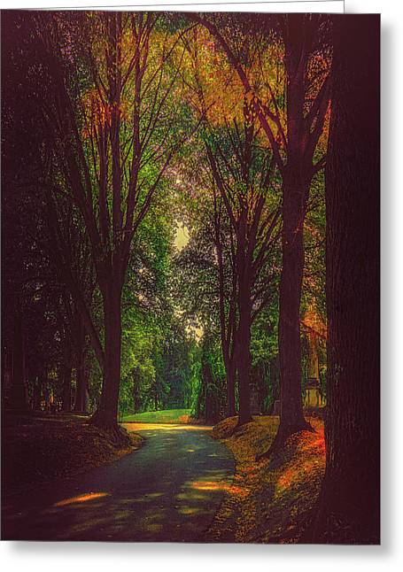 Greeting Card featuring the photograph A Moody Pathway by Chris Lord