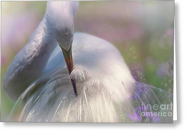 A Zen Moment Fine Art Photography By Mary Lou Chmura Greeting Card