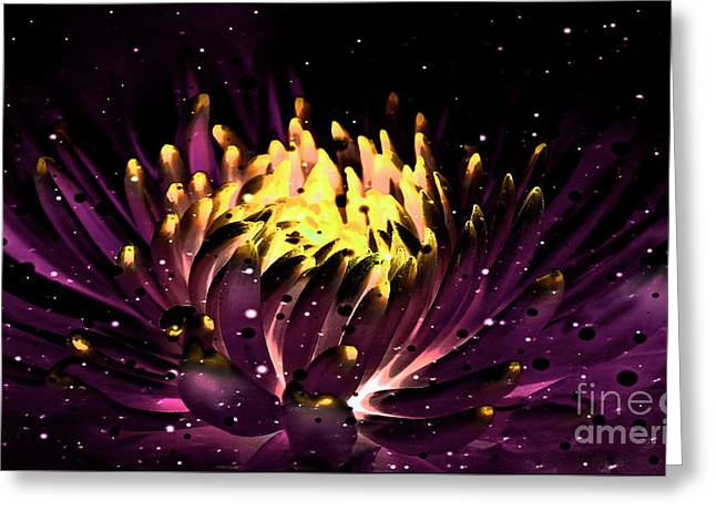 Abstract Digital Dahlia Floral Cosmos 891 Greeting Card