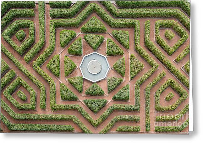 Aerial View Of A Hedge Maze Greeting Card