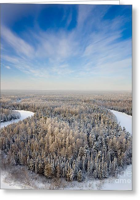 Aerial View Of Forest River In Time Of Greeting Card