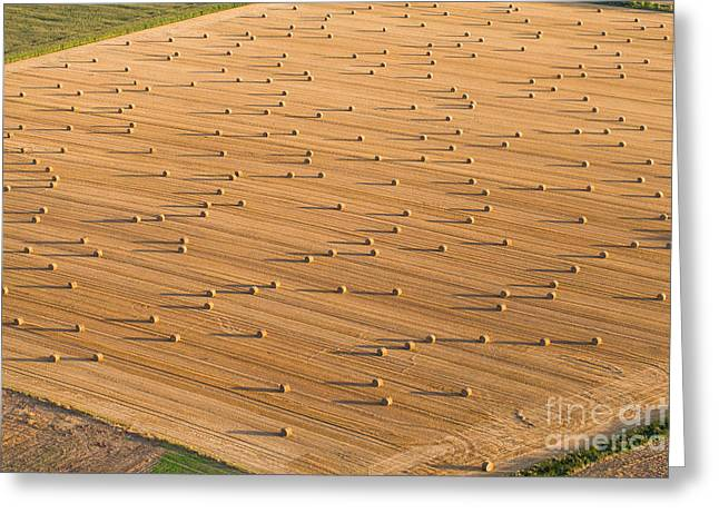Aerial View Of  Harvest Field Greeting Card
