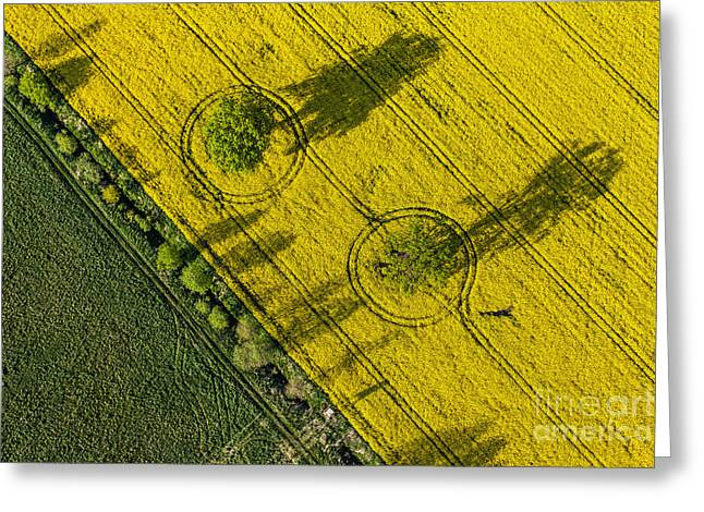 Aerial View Of Harvest Fields In Poland Greeting Card