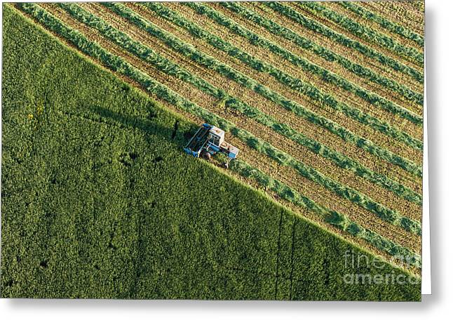 Aerial View Of Harvest Fields With Greeting Card