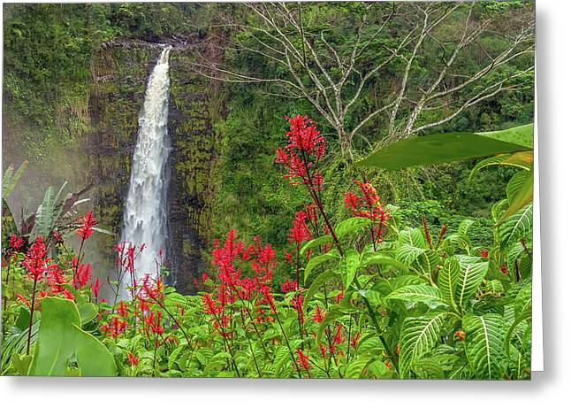 Greeting Card featuring the photograph Akaka In Red by Denise Bird