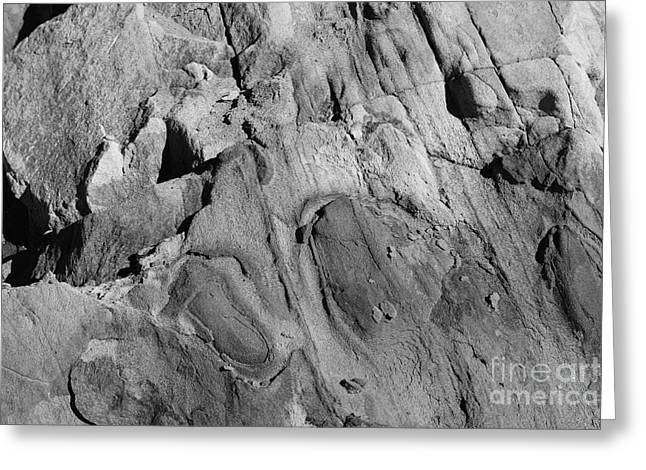 Greeting Card featuring the photograph Alien Rock by Jeni Gray