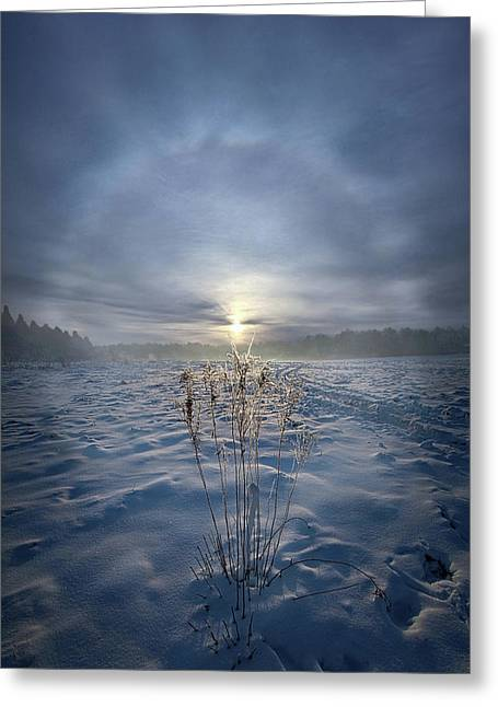 Greeting Card featuring the photograph All Is Blue For A Time by Phil Koch