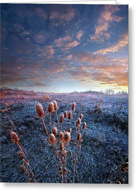 Greeting Card featuring the photograph All That You Need Is In Your Soul by Phil Koch