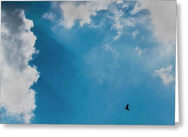 Colours. Blue. Alone. Greeting Card