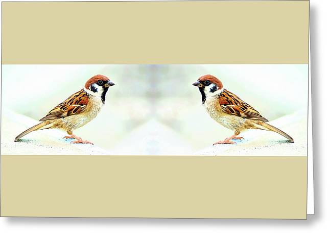 Greeting Card featuring the photograph American Tree Sparrows by Anthony Dezenzio