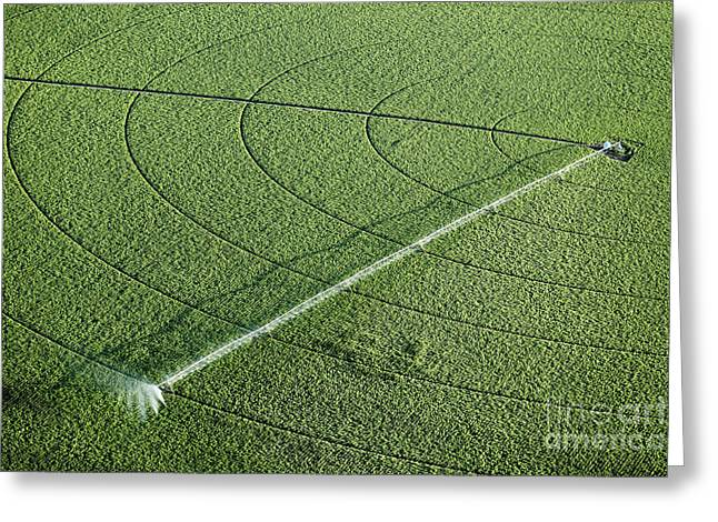 An Aerial View Of An Agricultural Greeting Card