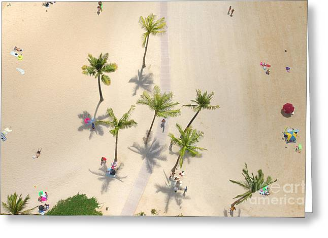 An Aerial View Of People Relaxing On A Greeting Card
