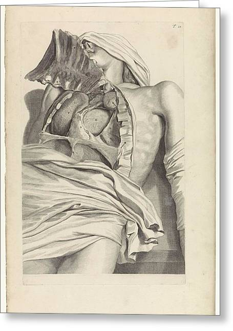 Anatomical Study Of The Opened Chest, Pieter Van Gunst, After Gerard De Lairesse, 1685 Greeting Card