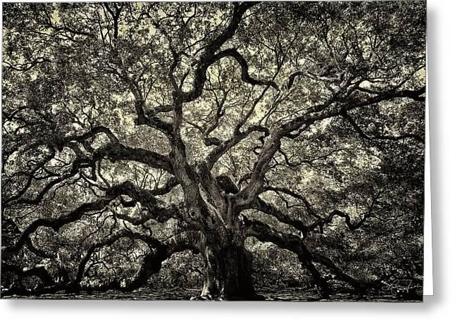 Angel Oak - Sepia Greeting Card