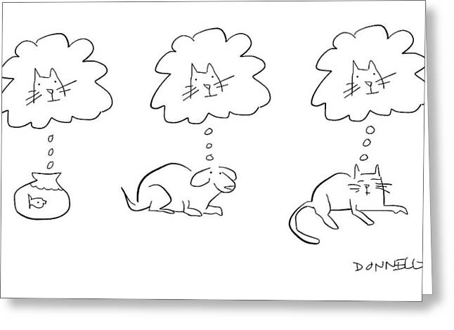 Animal Thoughts Greeting Card