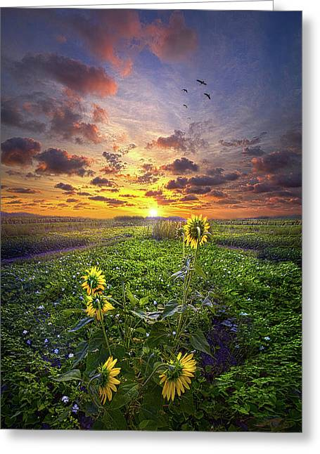 Greeting Card featuring the photograph Any Time At All by Phil Koch