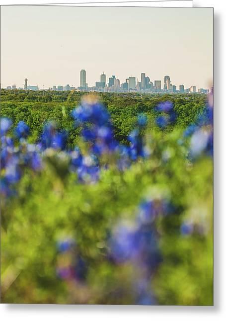April In Dallas Greeting Card