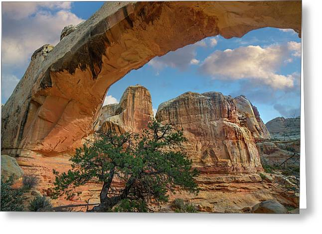Arch, Hickman Bridge, Capitol Reef Greeting Card