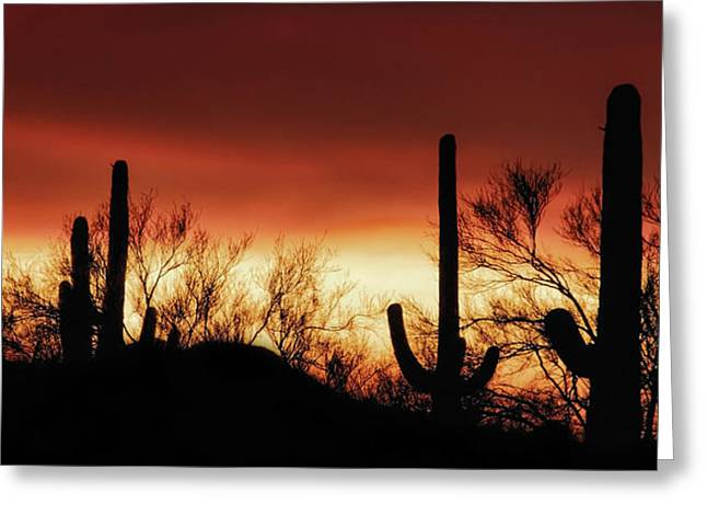 Arizona Monsoon Sunset 2019 Greeting Card