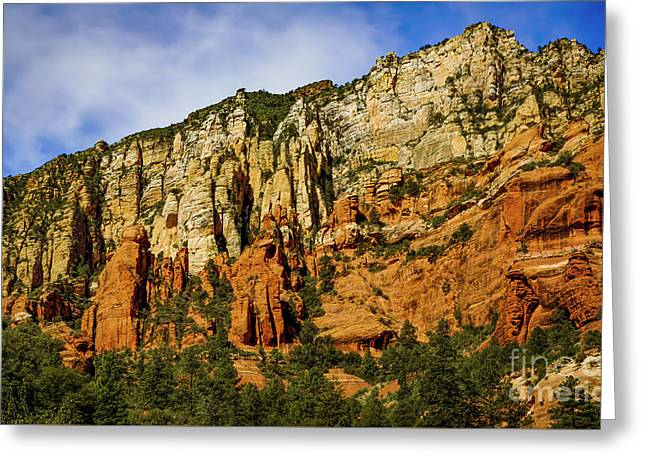 Greeting Card featuring the photograph Arizona Morning by Jon Burch Photography
