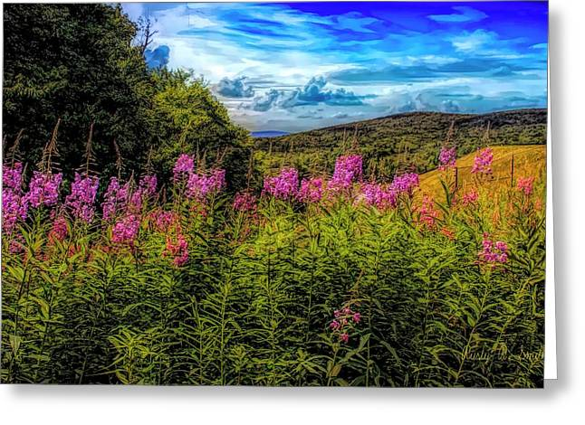 Art Photo Of Vermont Rolling Hills With Pink Flowers In The Fore Greeting Card