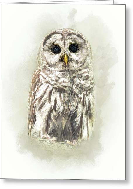 Woodland Owl Greeting Card