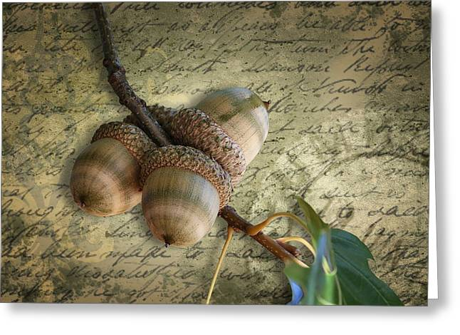 Greeting Card featuring the mixed media Autumn Acorns On Vintage Postcard Digital Art by Debi Dalio