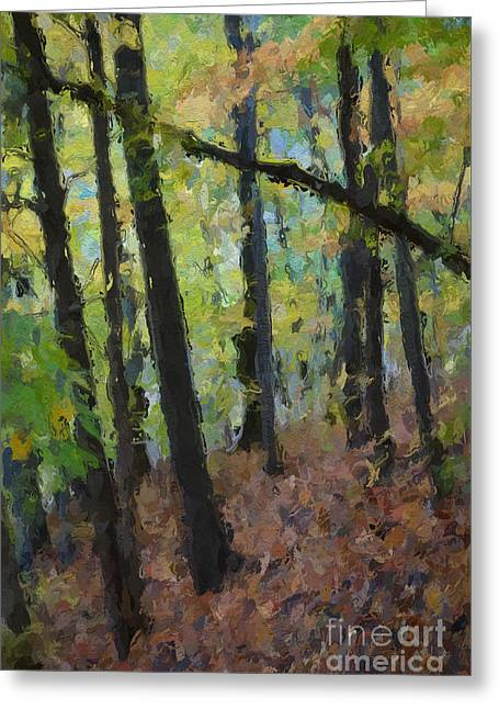Autumn Afternoon Greeting Card by David Boudreau
