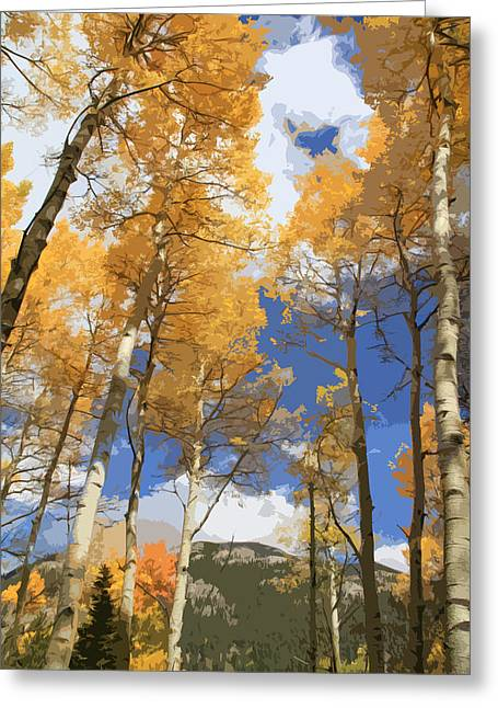 Autumn Aspens In The Rockies Greeting Card