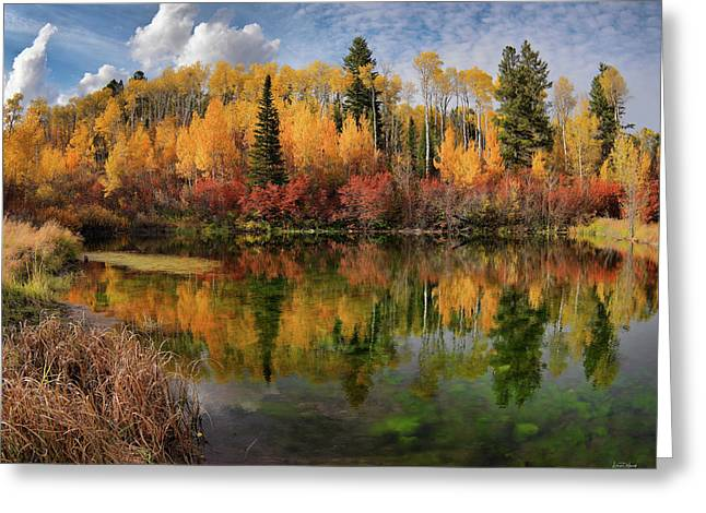 Autumn At Its Best Greeting Card by Leland D Howard