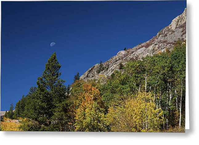 Greeting Card featuring the photograph Autumn Bella Luna by James BO Insogna