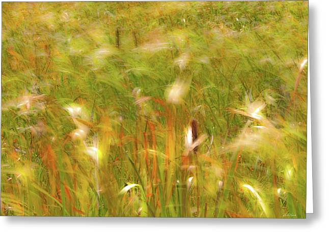 Autumn Breezes 2 Greeting Card by Leland D Howard