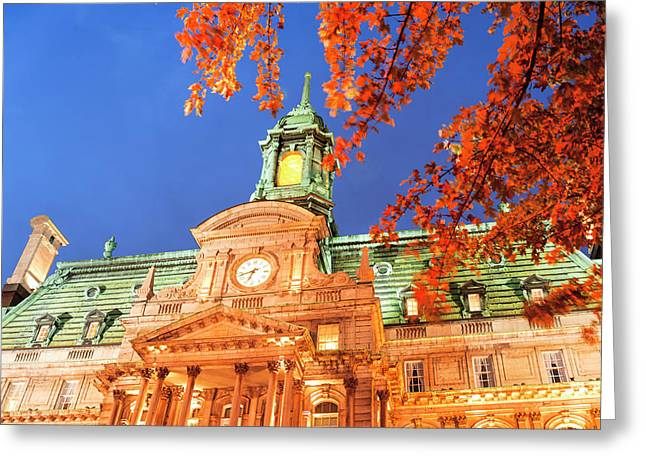 Autumn Colored Trees, Hotel De Ville Greeting Card
