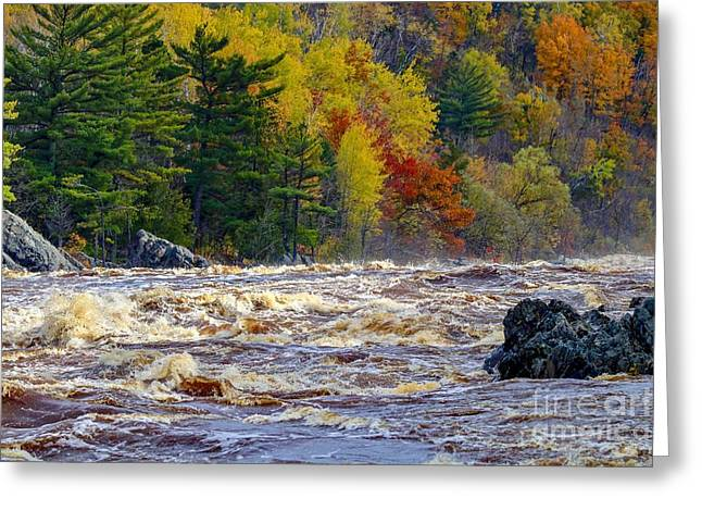 Autumn Colors And Rushing Rapids   Greeting Card