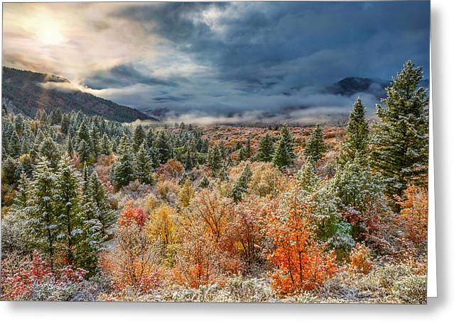 Autumn Grandeur Greeting Card by Leland D Howard