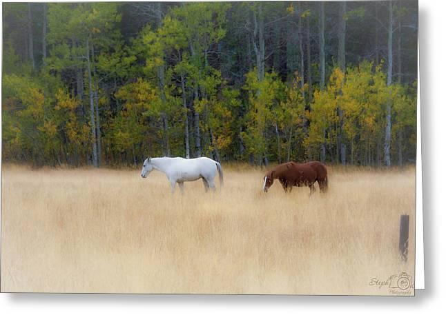 Autumn Horse Meadow Greeting Card
