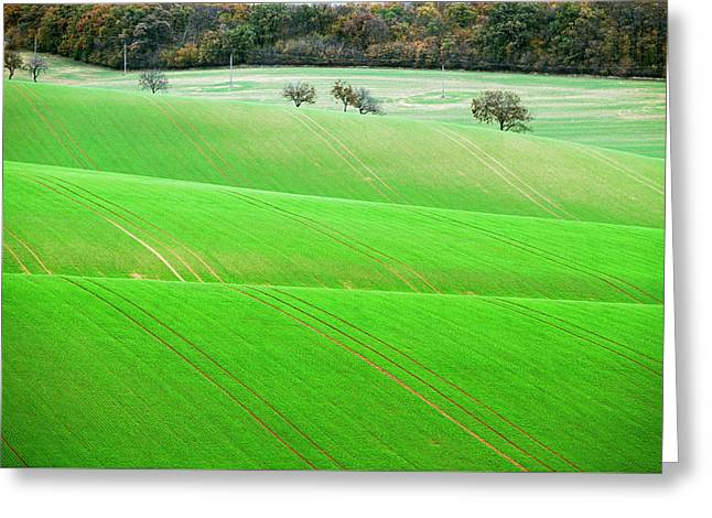Greeting Card featuring the photograph Autumn In Moravia 11 by Dubi Roman