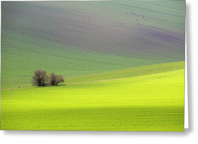 Autumn In South Moravia 13 Greeting Card