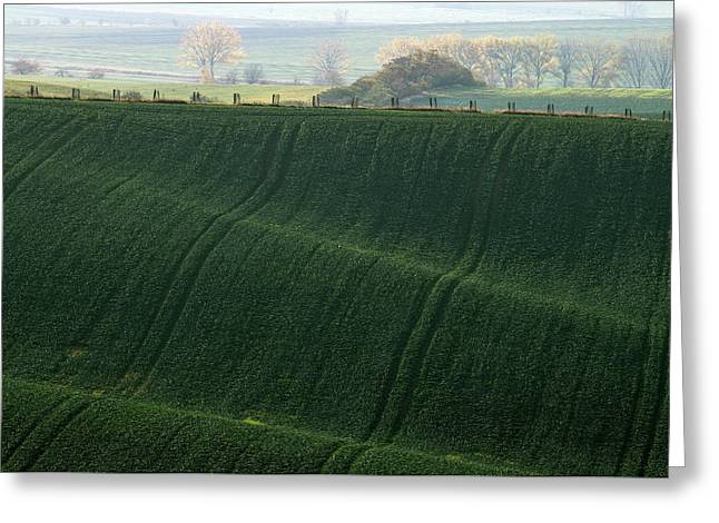 Greeting Card featuring the photograph Autumn In Moravia 13 by Dubi Roman