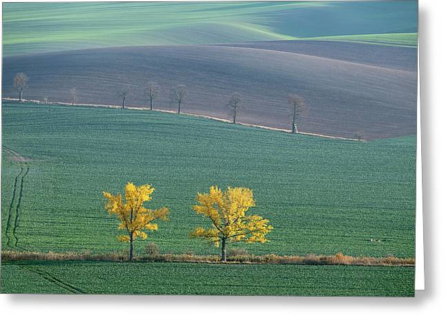 Greeting Card featuring the photograph Autumn In Moravia 7 by Dubi Roman