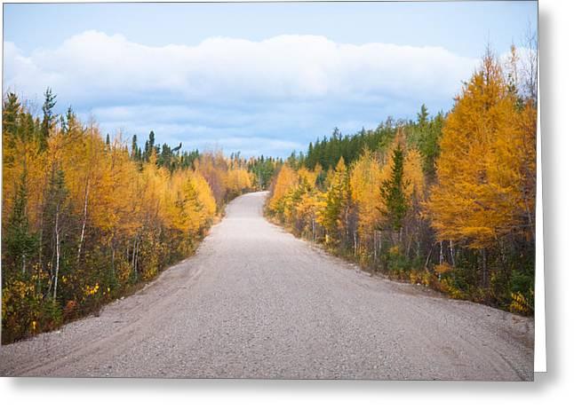 Autumn In Ontario Greeting Card