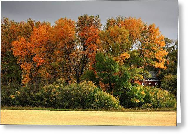 Autumn Is Nigh  Greeting Card