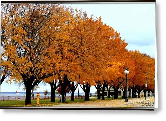 Autumn Leaves In Menominee Michigan Greeting Card