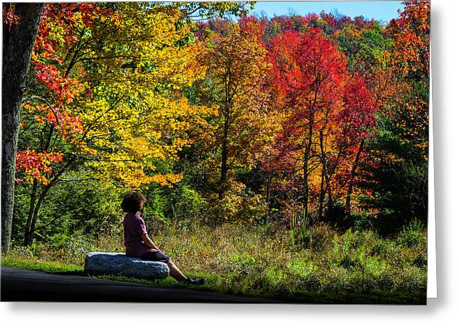 Autumn Leaves In The Catskill Mountains Greeting Card