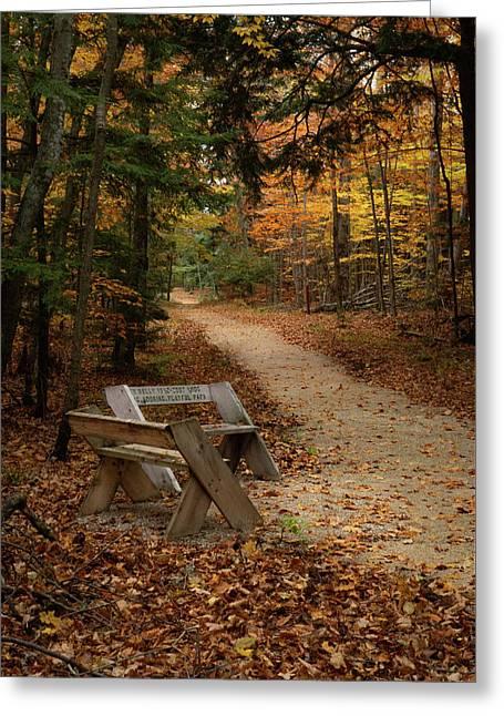Autumn Meetup Greeting Card