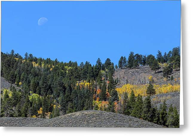 Greeting Card featuring the photograph Autumn Moon by James BO Insogna