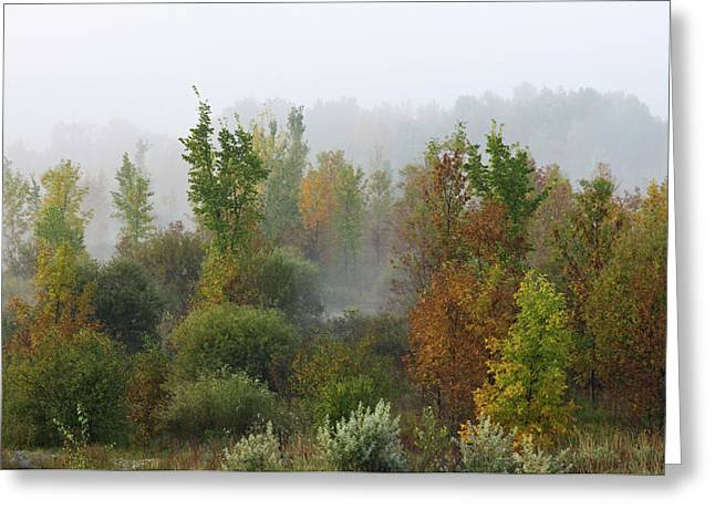 Greeting Card featuring the photograph Autumn Morning Fog by Tatiana Travelways