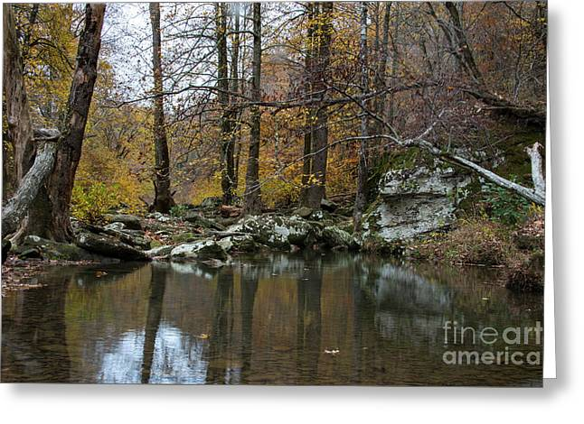 Greeting Card featuring the photograph Autumn On The Kings River by Joe Sparks