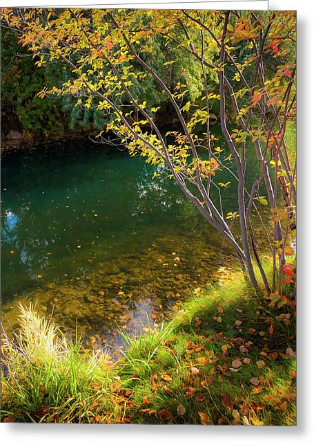 Greeting Card featuring the photograph Autumn Pond by Mark Mille