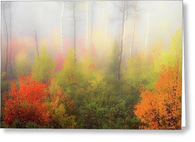 Autumn Stillness 2 Greeting Card by Leland D Howard